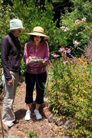 A Bay-Friendly Garden Walk offers pointers for reducing water use.