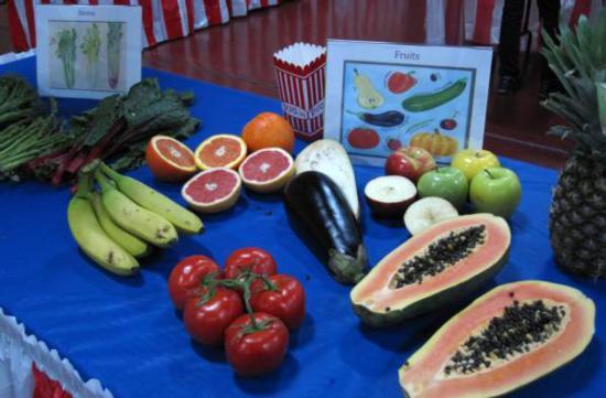 Farm Day 2015_fruit