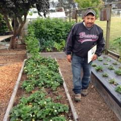 Gilo Rodrigquez, West Marin Elementary School Garden