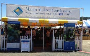 MMG county fair