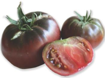 Growing in your Garden Now - Tomatoes