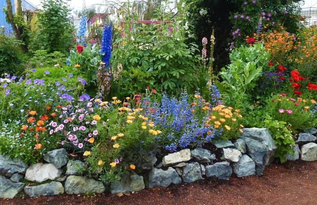 Gardening Tips - Planning Your Cutting Garden?